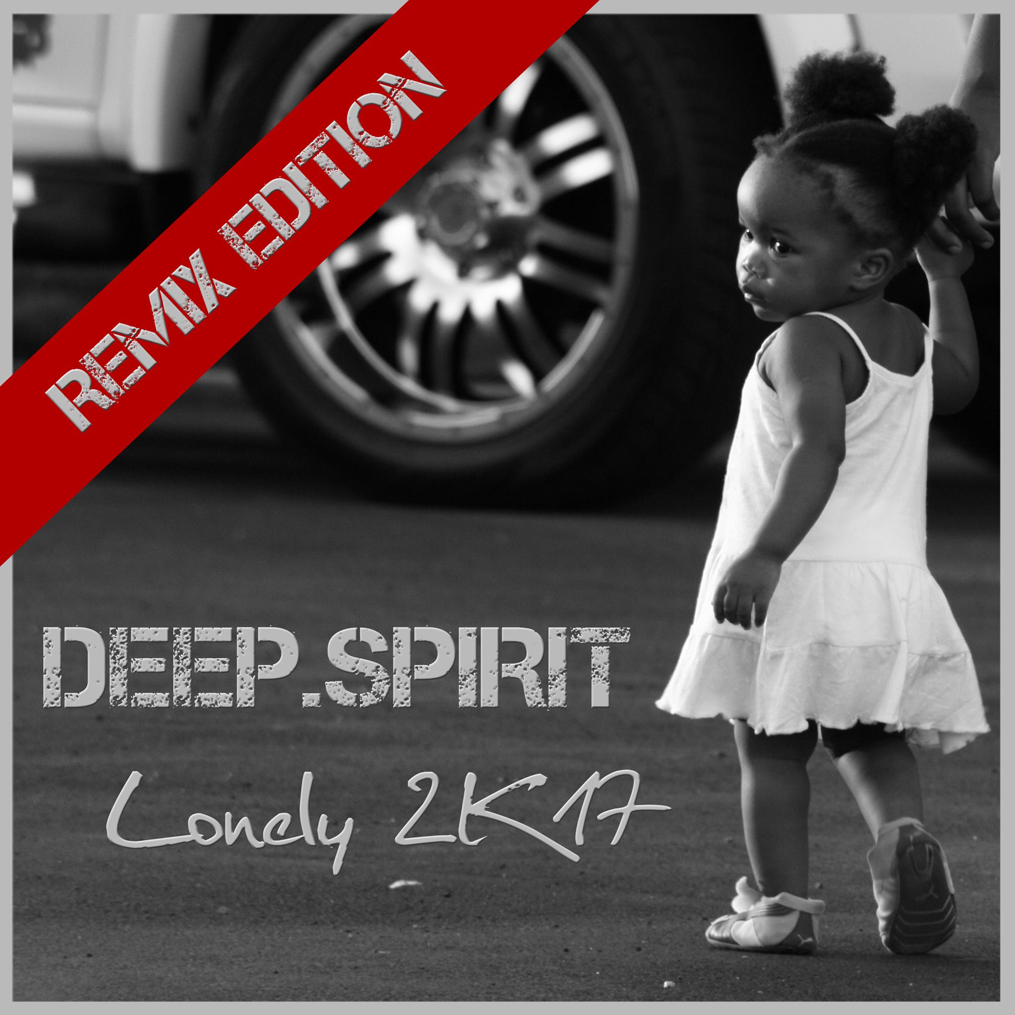 Deep spirit lonely 2k17 remix edition idp for Hofbauer roland